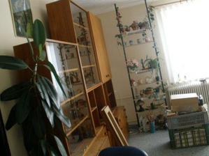 obývák před vystěhováním:-)