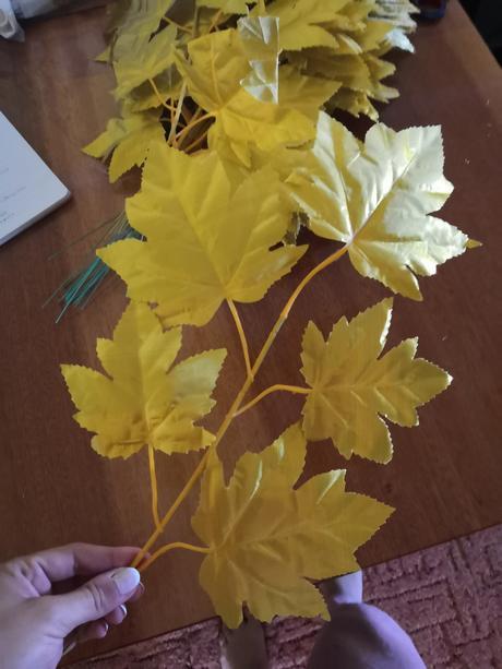 Kvet zlatý (vínna réva) - Obrázok č. 1