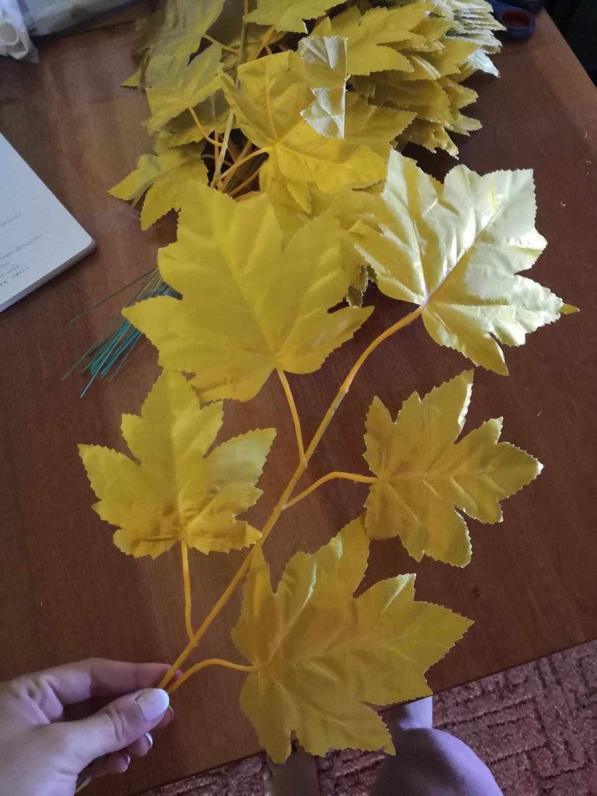 Kvet zlatý (vínna réva) - Obrázok č. 2