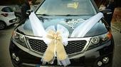 Svatební ozdoby - auto, stoly, doplňky,