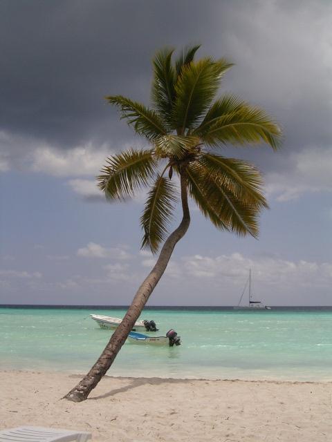Csilla{{_AND_}}Tony - svadobná cesta - Dominikánska rep.