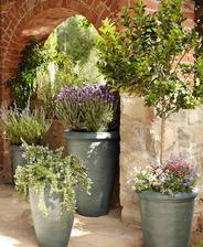 máme už nakreslenú záhradu presne v tomto duchu, sa teším  :-) hortenzie  levandula milion krušpánu :-)
