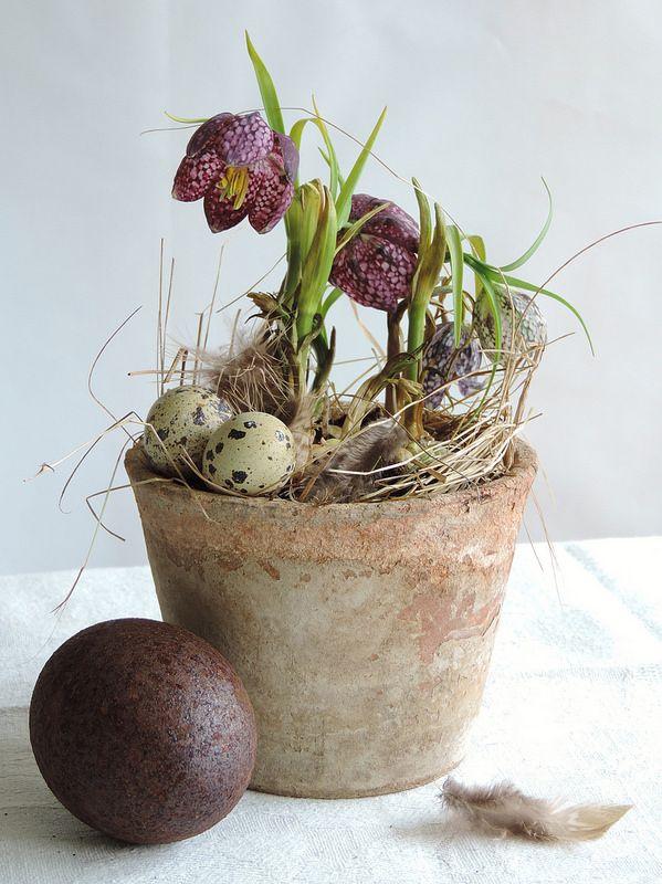 Velikonoční inspirace - Obrázek č. 79