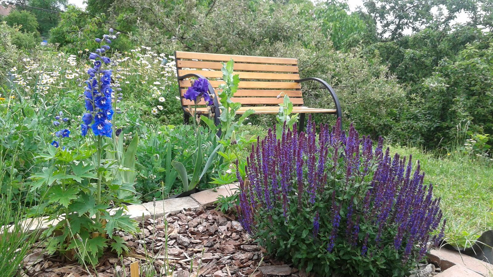 Zahrada od začátku - Obrázek č. 29