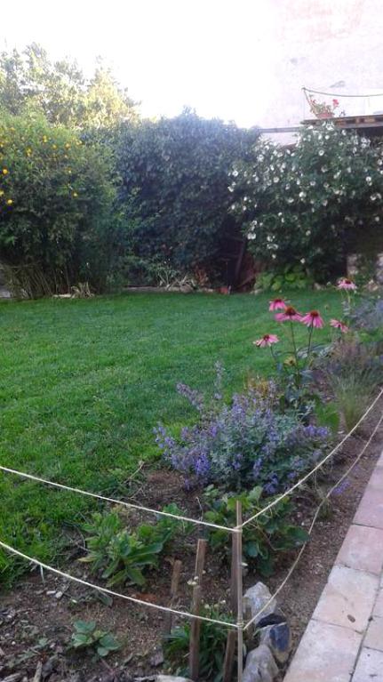 Zahrada od začátku