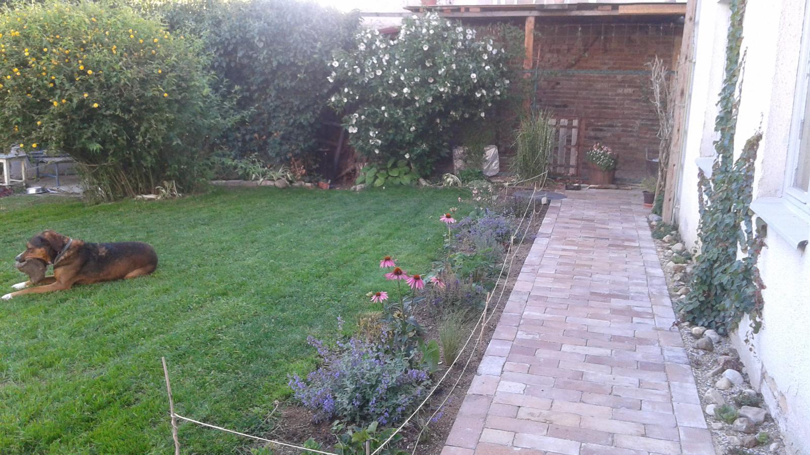 Zahrada od začátku - Obrázek č. 50