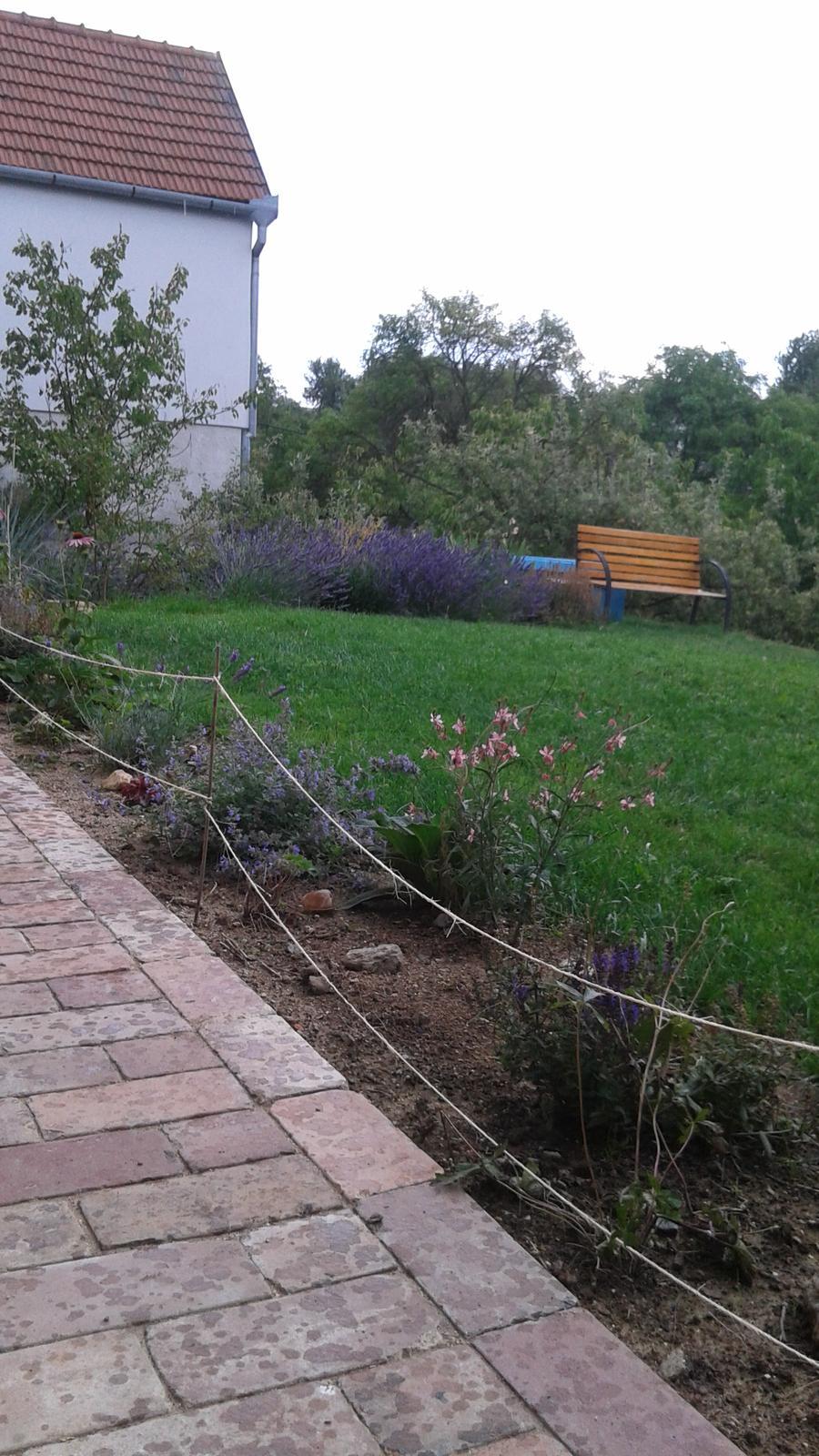 Zahrada od začátku - Obrázek č. 49