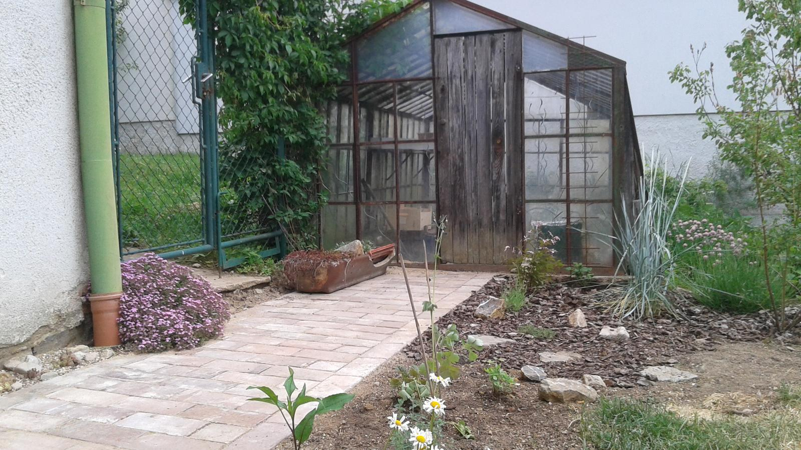 Zahrada od začátku - po 14 dnech už to vypadalo veseleji :-)
