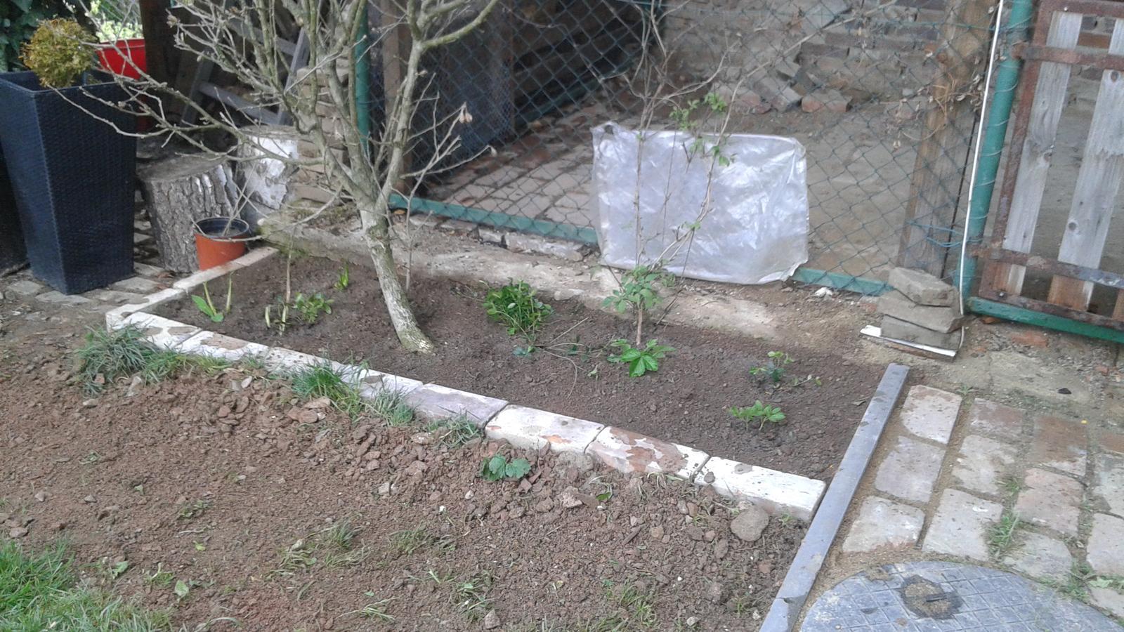 Zahrada od začátku - lepší!