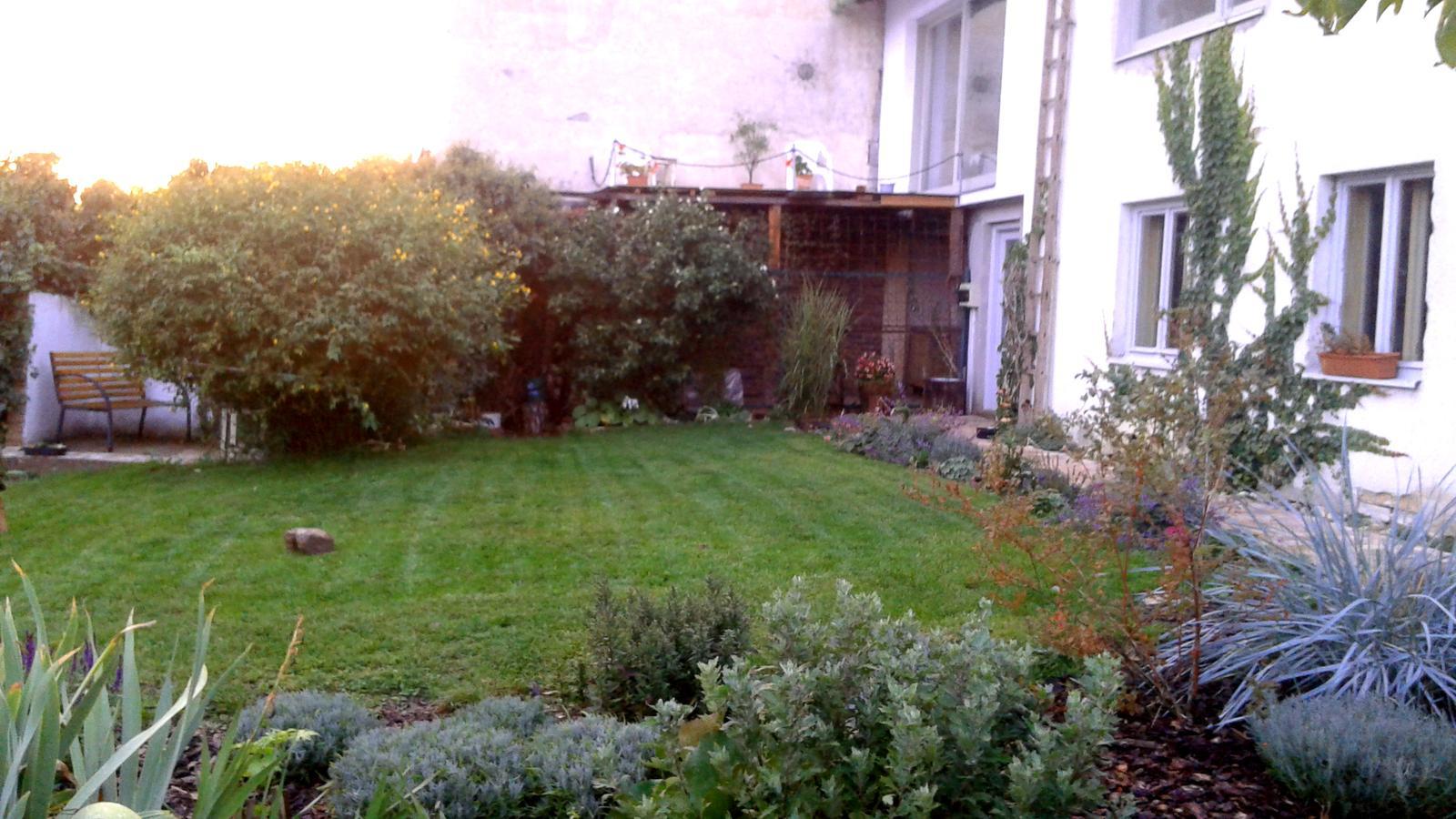 Zahrada od začátku - Obrázek č. 66