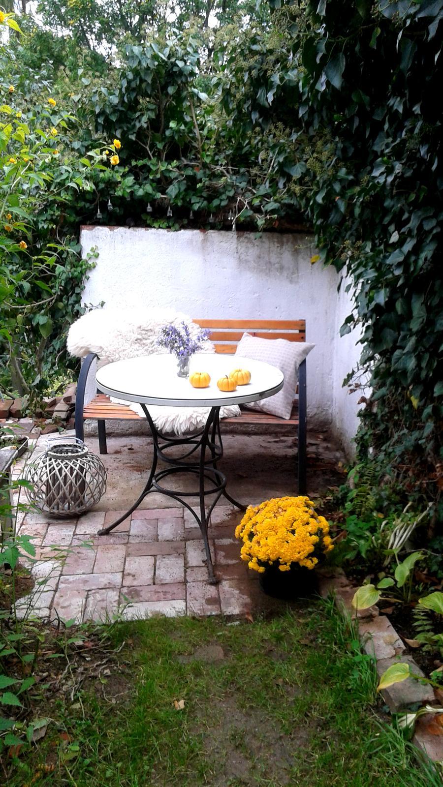 Zahrada od začátku - Obrázek č. 69