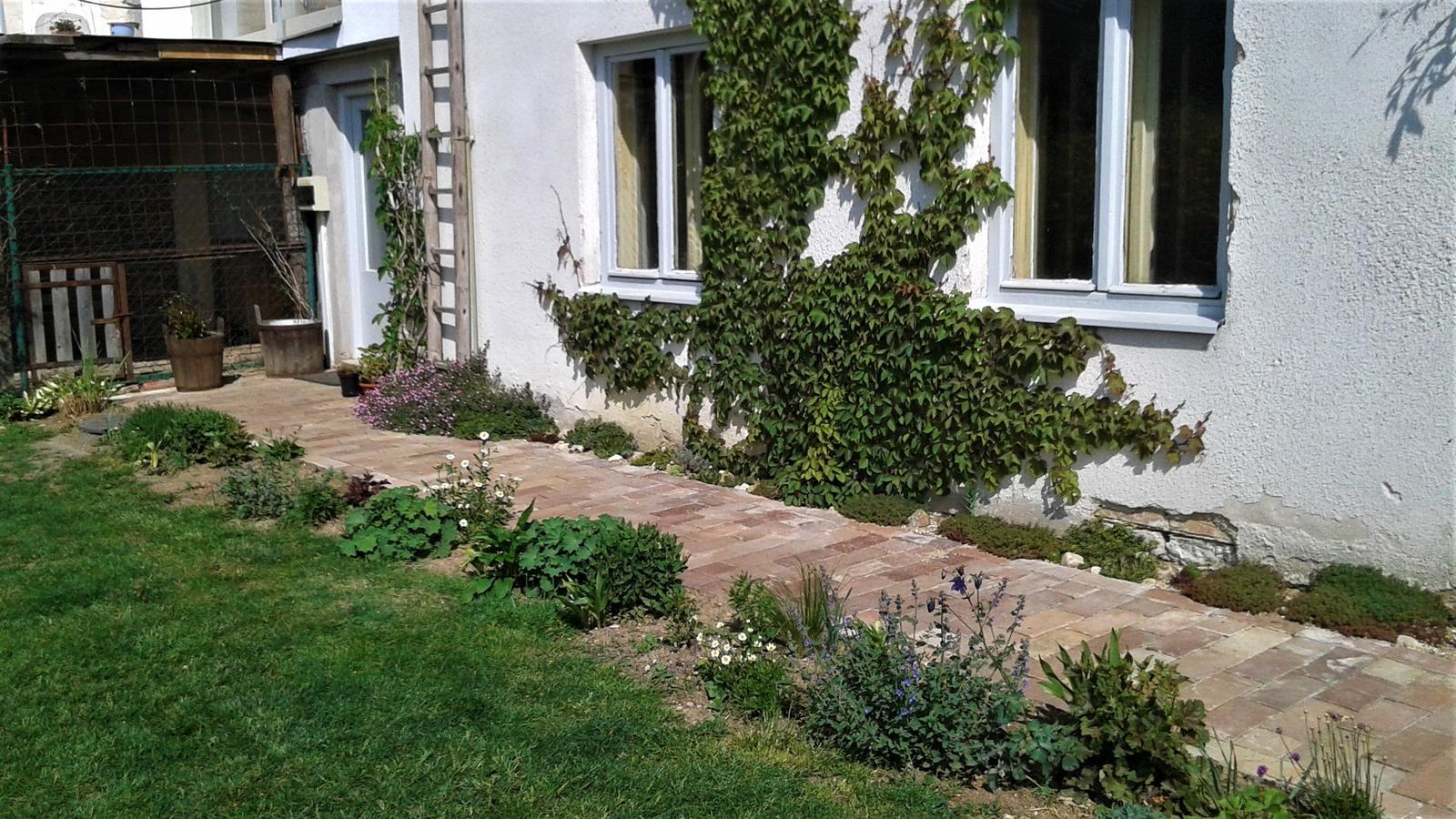 Zahrada od začátku - Obrázek č. 98