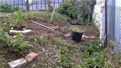 pole neorané - pustila jsem se do dalšího kousku zahrady. V pozadí krumpáč - typická pomůcka zahradníka pro jeho zahradu s jílovitou půdou. To zase bude večerů s bolavými zády :-)
