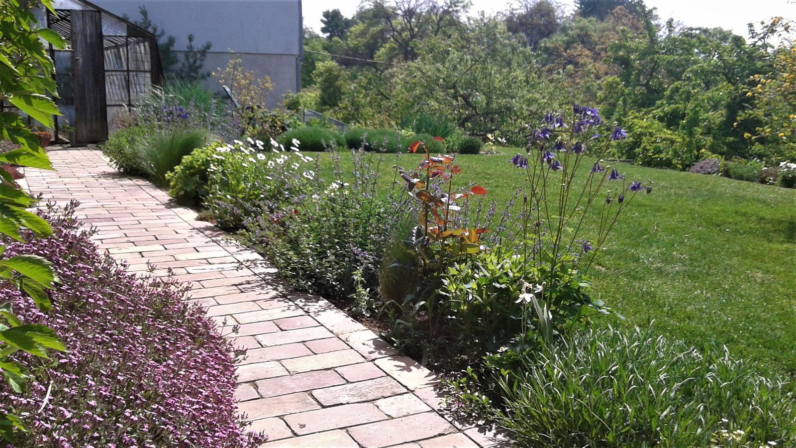 Zahrada od začátku - Obrázek č. 140