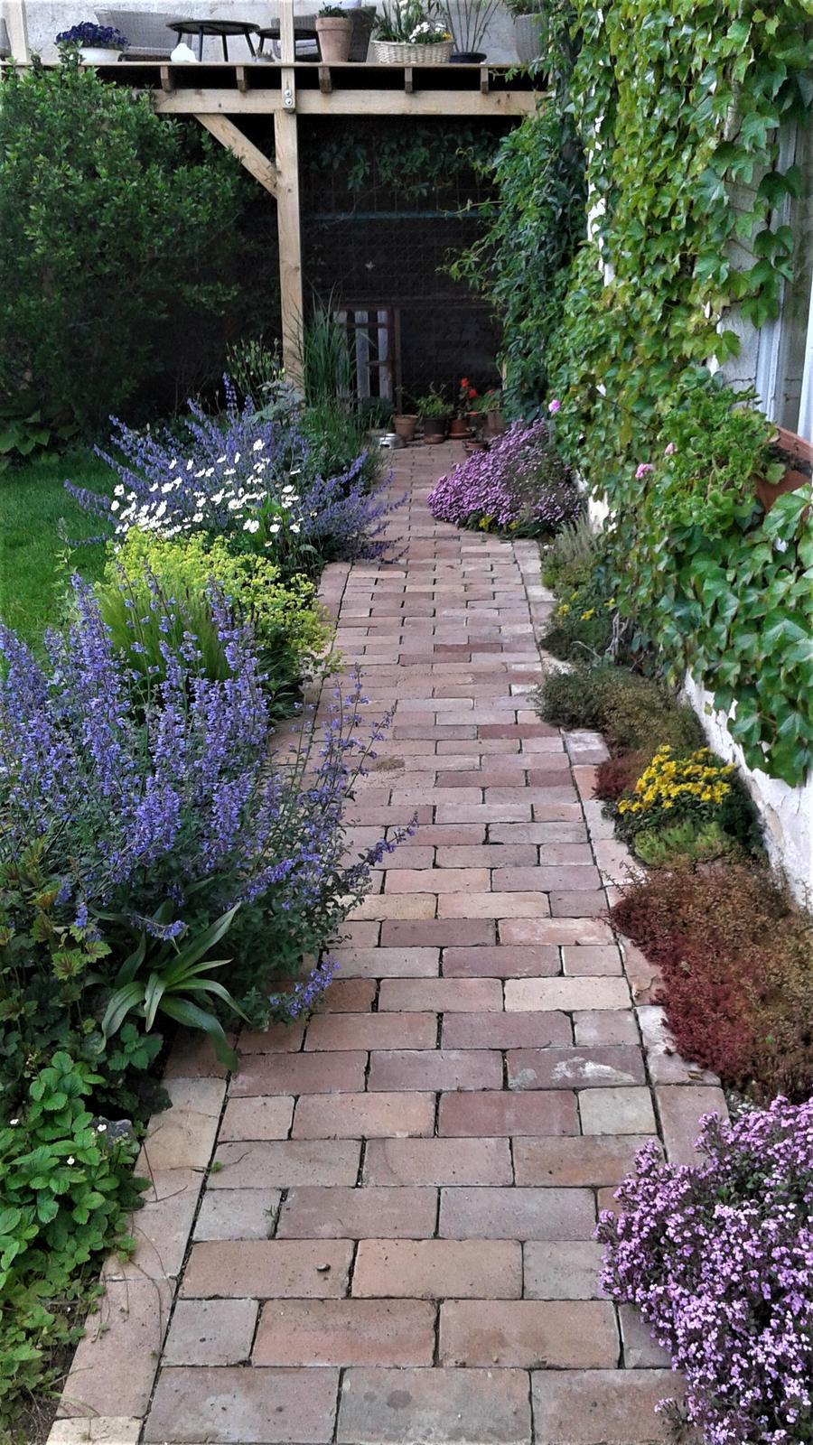 Zahrada od začátku - Obrázek č. 143