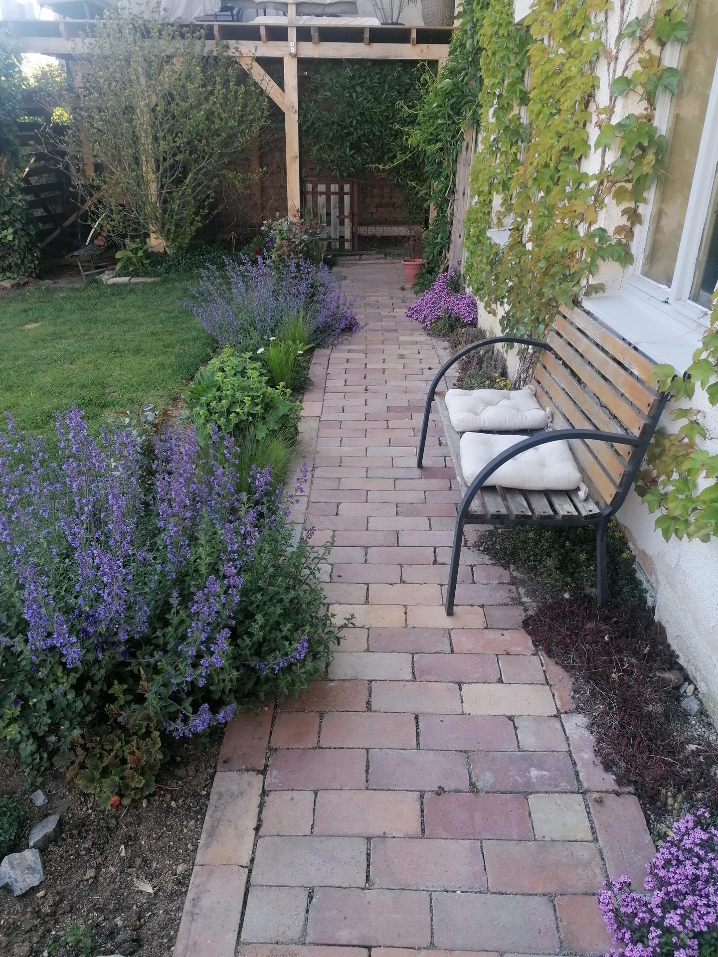 Zahrada od začátku - Obrázek č. 169