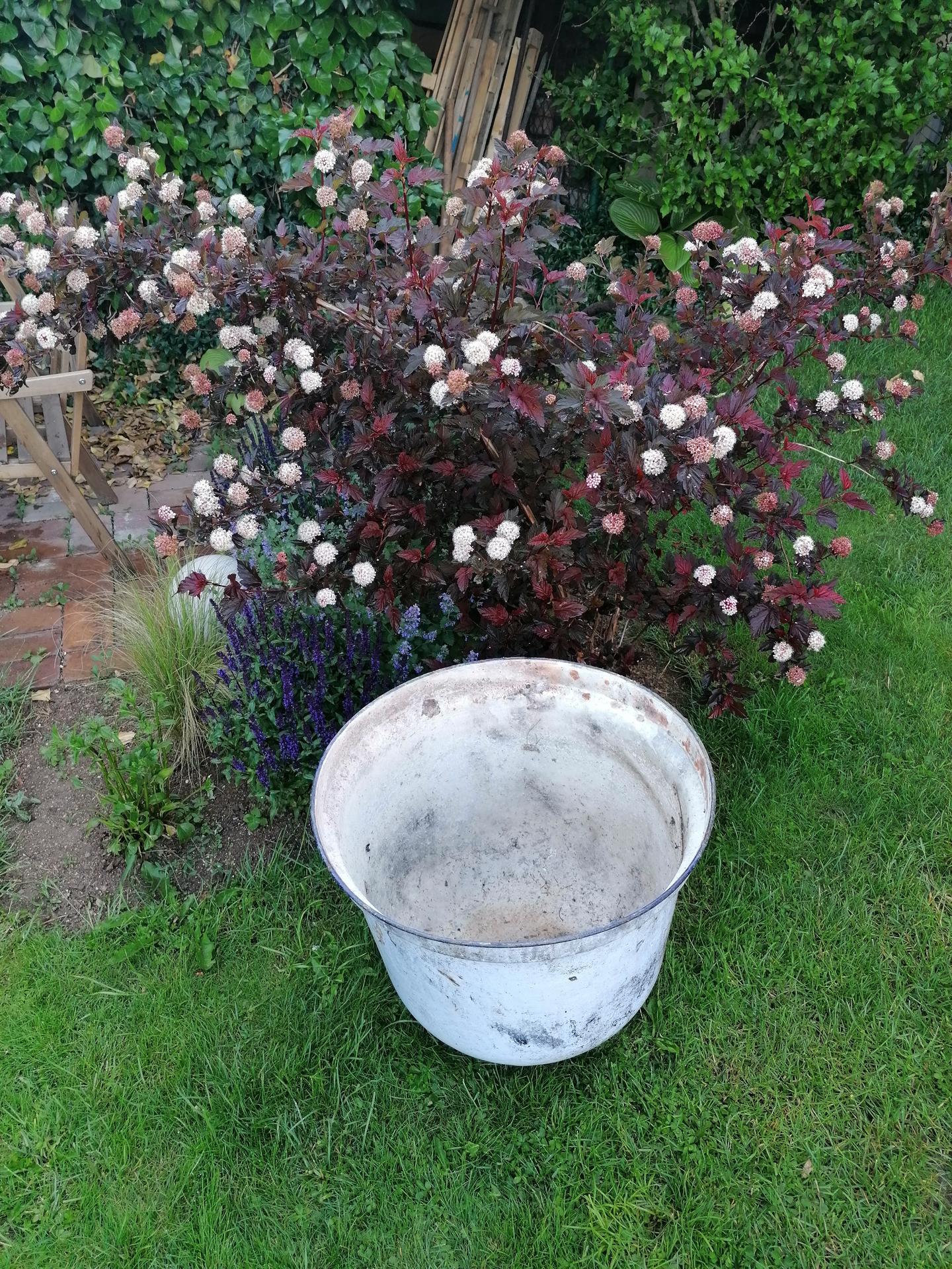 Zahrada od začátku - Vodní prvek bude!