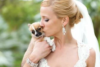 Bride and her tiny doggie