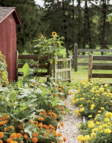 Život na farmě :-) - Obrázek č. 41