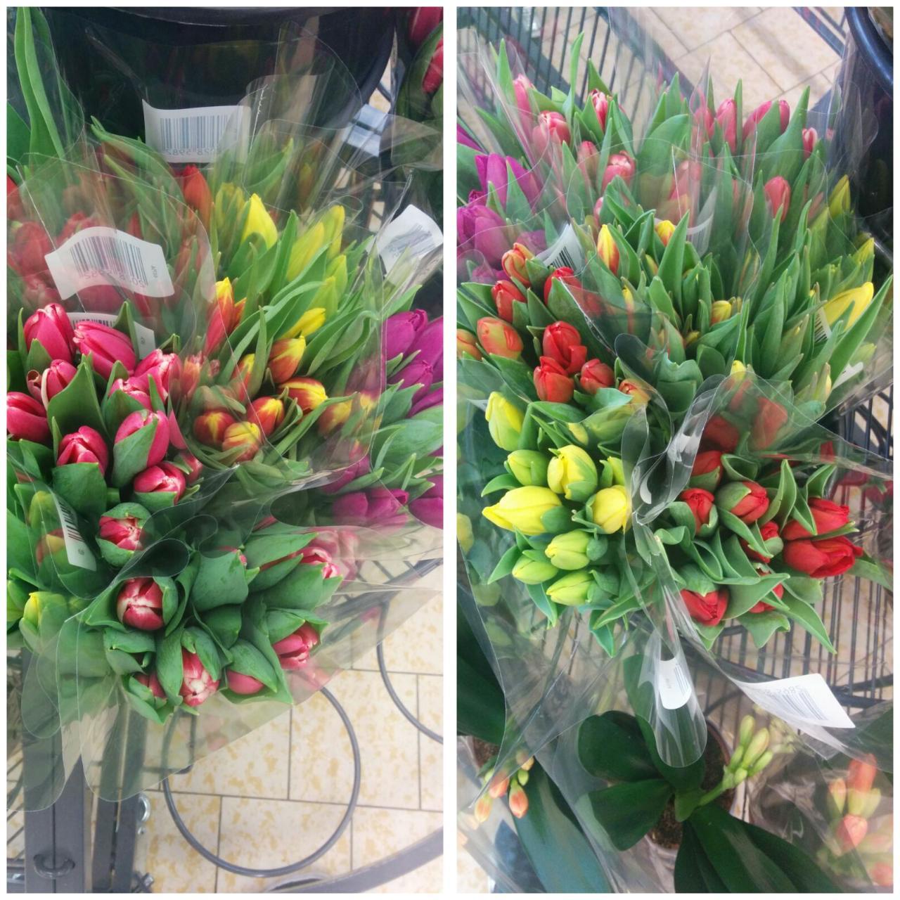 Rok 2017 u nás a po našem.... - Syn mi na nákupu vyfotil dnešní nabídku tulipánů,jedny hezčí než druhý...objednala jsem si růžový,ty jsem ještě neměla..