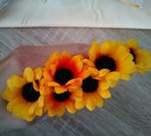 6 květů slunečnice,