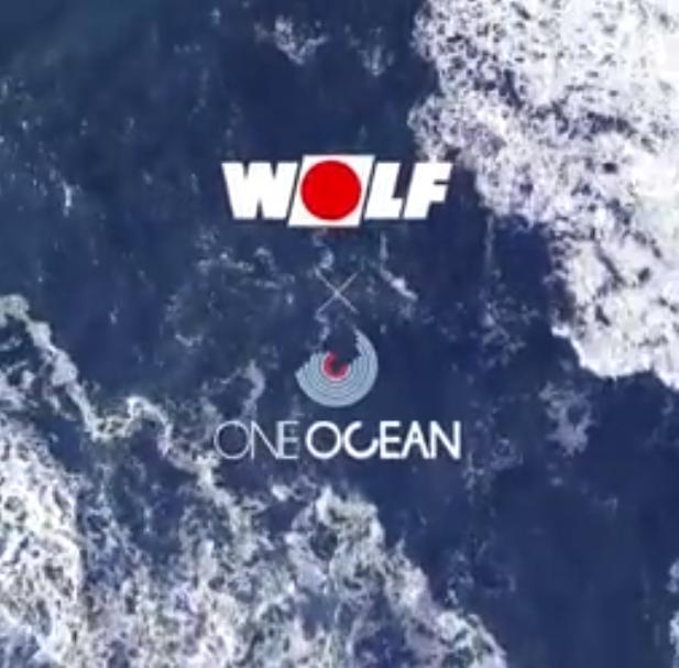 Oceány fungujú ako pľúca našej planéty a dodávajú väčšinu kyslíka, ktorý prijímame. Oceán absorbuje obrovské množstvo CO₂ - a tým spomaľuje zmeny podnebia. Pretože musí absorbovať čoraz viac CO₂, voda je nielen teplejšia, ale aj kyslejšia - s vážnymi dôsledkami pre celý ekosystém. Spoločne s nadáciou One Ocean Foundation vedie WOLF kampaň za naše oceány. 🌊 #wolfslovensko #oneoceanfoundation - Obrázok č. 1