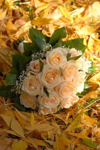 Květiny - Obrázek č. 84