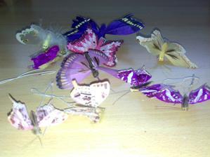 motýliky na tortu