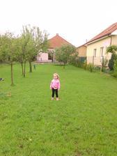 Zatravnena zahrada