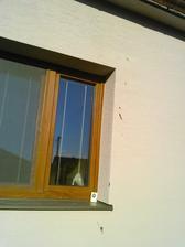 Lastovicky nam okakali fasadu... 3x sa nam pokusili zahniezdit nad spalnovym oknom... Mam uz na ne alergiu!