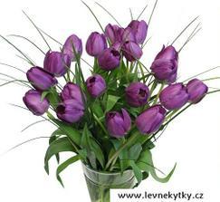 Budu mít kytici z fialových tulipánů