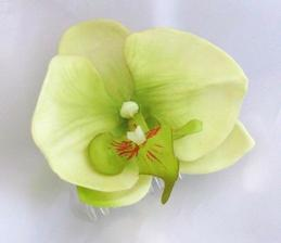 orchidejky na vyzdobu svadobnej tabule