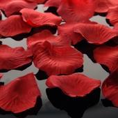 Okvětní plátky růží,
