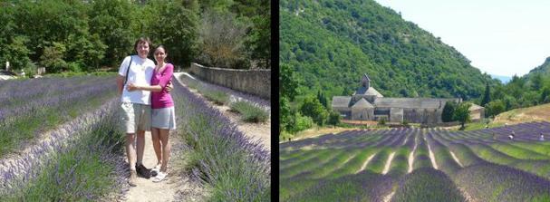 Na svatební cestě za levandulovými poli do Provence, foto u kláštera Sénanque