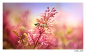 ..na naše výročí 2.5. jsem dostala tento krásný prstýnek...a tím začalo plánování naší svatby...