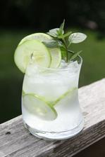 ..gin s tonikem a okurkou..