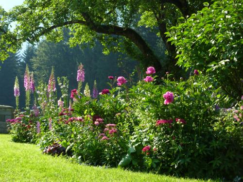 Čaro divých záhrad - Obrázok č. 5