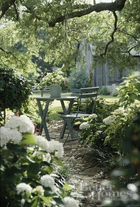 Čaro divých záhrad - Obrázok č. 18