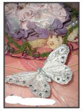 krasny motylik do kytice