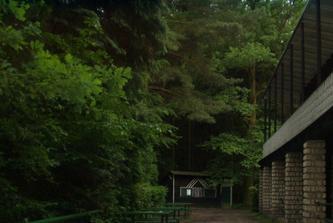 Im Litovelwald. V litovelskem lese. En el bosque de Litovel.
