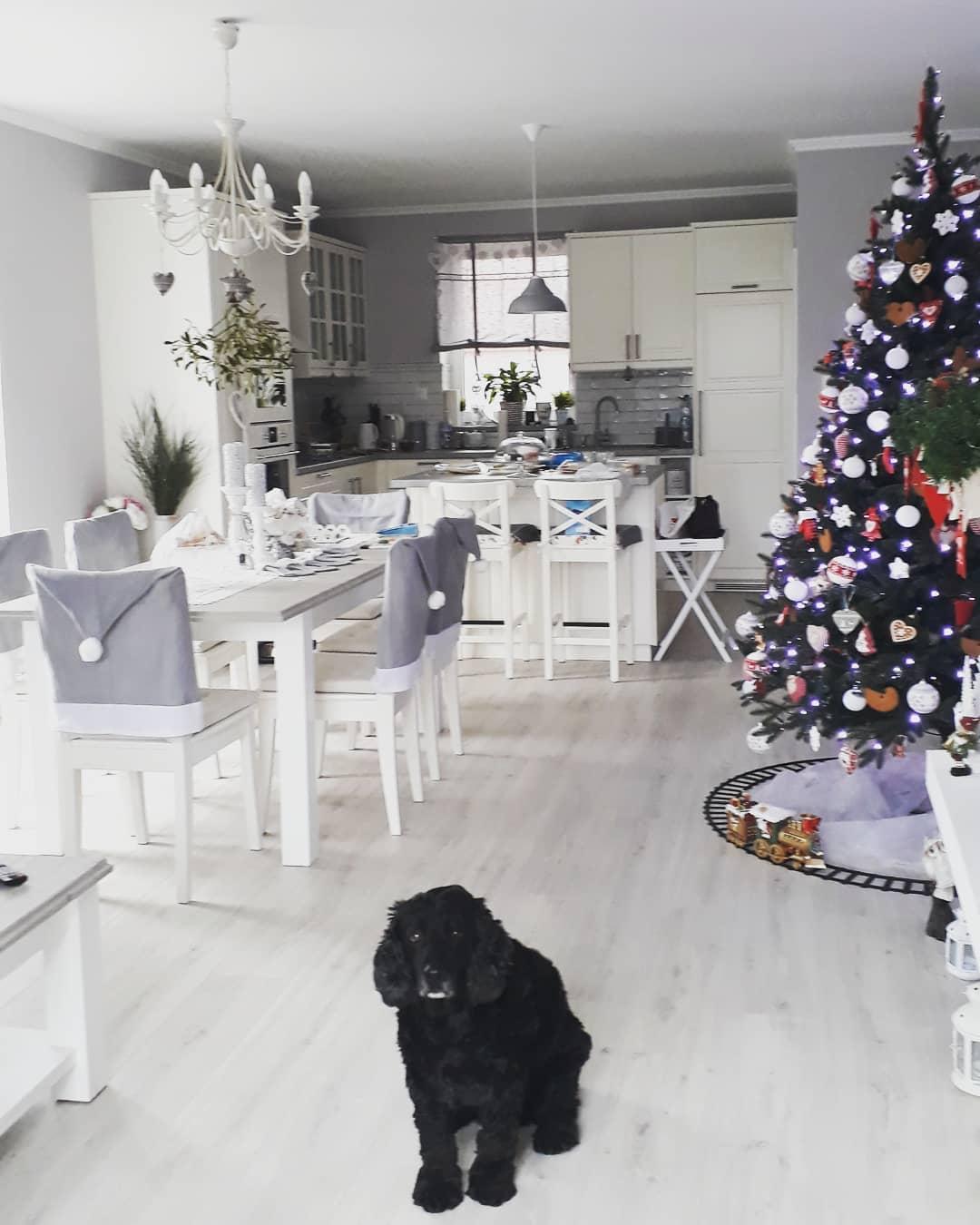 Náš domček bielo-šedý seversko-vidiecky štýl - Takato je realita - Jessie a jej domček