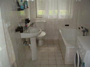 nynější koupelna (bydlí tam sám chlapík, tak není moc udržovaná, ale  saponáty už se řadí do pozoru)