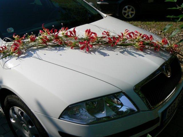 Výzdoba auta - Obrázek č. 68