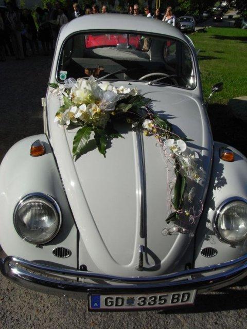 Výzdoba auta - Obrázek č. 72
