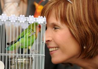 Je to papoušek ...
