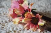Tři květy Echinacey