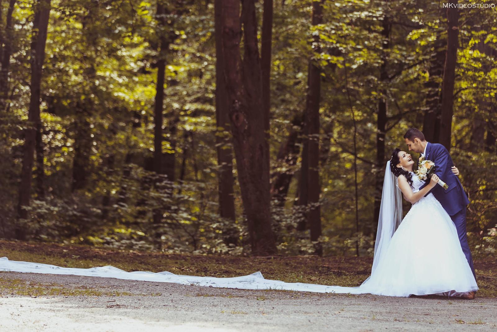 Naša úžasná svadbička -... - Obrázok č. 1
