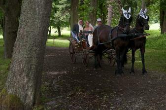 Svatební dar od resortu Svatá Kateřina, jízda v kočáru