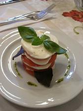 ... alicin sarm alebo paradajka s mozzarelou a bazalkou ...