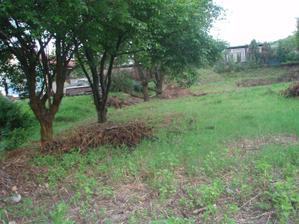 náš pozemok v roku 2008